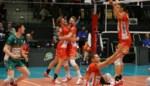 Stunt van formaat voor Maaseik in Champions League volleybal