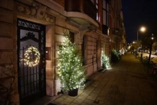 Eglantierenlaan is weer 'straat van kerstbomen'