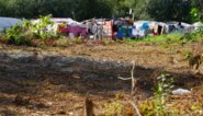 """Vier welzijnsorganisaties vragen stadsbestuur: """"Maak het Romaproject kleinschaliger en we werken wél mee"""""""