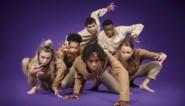 VTM maakt laatste finalist 'Belgium's got talent' bekend: deze act werd door de kijkers gekozen