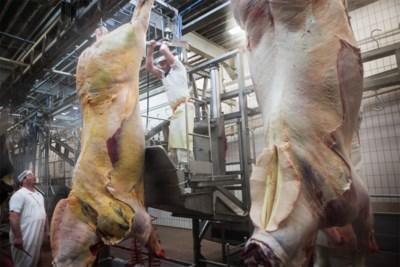 Dodelijke voedselramp op nippertje vermeden dankzij alerte inspecteur van voedselagentschap