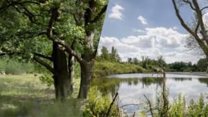 Wandelen langs oude bochten van de Schelde
