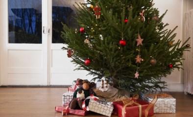 SOS feestdagen: heb je nog tijd om online pakjes te bestellen? Hoe ben je zeker dat ze correct geleverd worden?