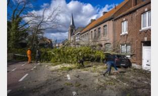 Stormweer richt minder schade aan dan verwacht