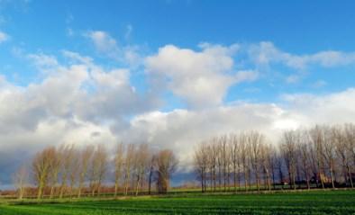 Dinsdag wordt het 9 graden boven het maandgemiddelde: gaat er wéér een record sneuvelen?
