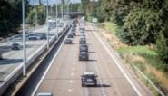"""Experts snoeihard voor plannen om E313 te verbreden: """"En toch gaan we beton storten"""""""