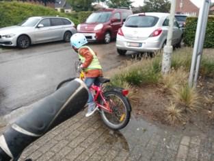 Veiliger fietsen in De Zwaantjes dankzij parkeerverbod