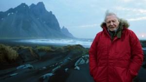 David Attenborough toont opnieuw natuurpracht en dierenverhalen in 'Seven worlds, one planet'