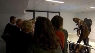 VIDEO. AfricaMuseum in Tervuren zet gids op non-actief na ongepaste uitspraken