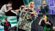 Waarom onze muziekrecensenten hun vijf meest opvallende albums plat draaien