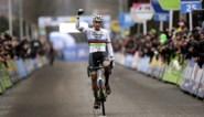 Wout van Aert laat zich opmerken, maar Van der Poel trekt opnieuw aan het langste eind in Loenhout na dolle inhaalrace