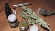 """""""Amper wetenschappelijk bewijs voor nut cannabismedicijnen"""""""