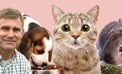 Denk aan de nieren, leer je kat jagen en 8 andere beestig goede voornemens voor baasjes én huisdieren