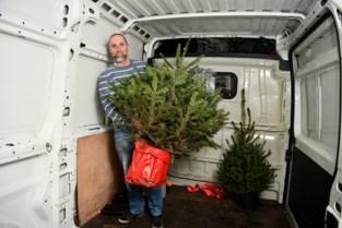 Kerstbomenredder uit Deurne stuurt bomen met pensioen in de Kempen: