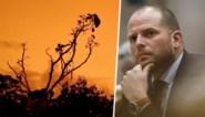 Theo Francken wil mondiale brandweermacht na bosbranden in Australië: