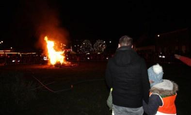 Edegem, Hove en Lint besluiten te stoppen met kerstboomverbrandingen