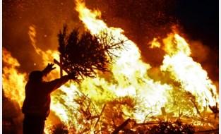 Aantal kerstboomverbrandingen daalt elk jaar in de Kempen