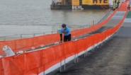 Ponton op het BK veldrijden geeft geheimen prijs: Niels Albert fietst als eerste over blikvanger van parcours