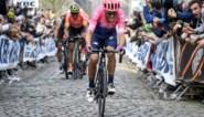 """Alberto Bettiol reageert op sneer van Evenepoel: """"Mij is altijd geleerd om te koersen om te winnen"""""""