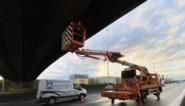 """""""Brokkelbrug"""" over E313 gaat permanent dicht"""