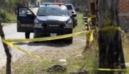 Resten van minstens 29 mensen aangetroffen in Mexicaans massagraf