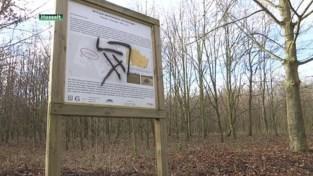 VIDEO. Vandalisme in geboortebos in Kuringen