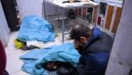 Minstens 39 strijders gedood bij gevechten in Syrië