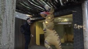 """Nederlandse vloggers zetten nu ook Zoo van Antwerpen op stelten: """"Hey Tho, die leeuw gaat springen"""""""