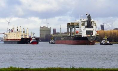 Gent krijgt dan toch een biomassacentrale
