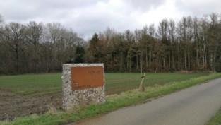 Stad Herentals beraadt zich over jachtrecht in bos met speelzone
