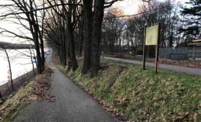 Koetsier zwaargewond nadat hij met paard in berm belandde in Olen