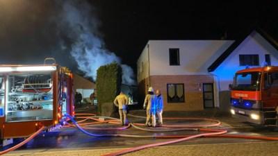 Twee garages beschadigd door brand: hond op nippertje uit aanpalende ren bevrijd