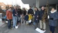 Torhout moet vergroenen, dus deelt stad gratis bomen uit