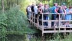 Bos waar zeldzame minivleermuis huist nu erkend als natuurgebied
