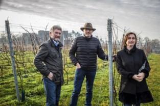 Primeur voor Waregem Expo: eerste Belgische wijnbouwbeurs