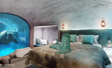 Pairi Daiza onthult eerste beelden van 'onderwaterkamers'