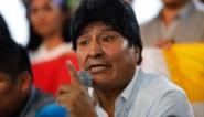 Afgezette Evo Morales schuift voormalig minister naar voren als presidentskandidaat Bolivia
