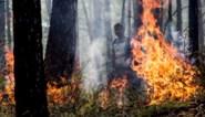 Elf doden bij brand in woning in Siberië