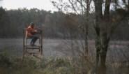 Drukjacht op everzwijnen in buurt van de Wijers