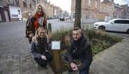 Waarom deze stad straks mini-moestuintjes op straat toelaat:
