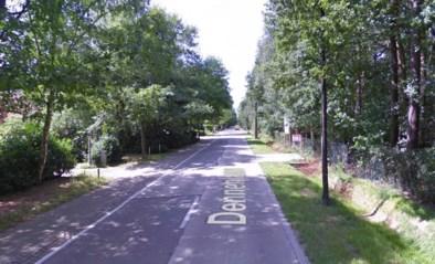 Fietser (57) overleden na aanrijding tijdens oversteken in Zandhoven
