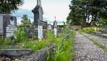 Meer groen in de stad en kerkhoven worden ontmoetingsplaatsen