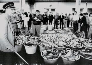 Bibliotheek op zoek naar materiaal van Nieuwpoortse Vismijn