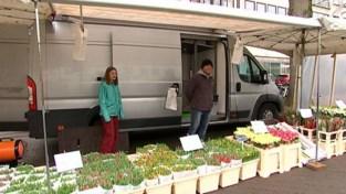 VIDEO. Leerlingen draaien dagje mee tijdens vrijdagmarkt in Leuven
