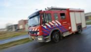 Drie doden bij brand in Nederlandse Duiven