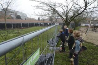Edgard De Smedtplantsoen al 45 jaar vervuild met asbest