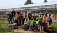 250.000 euro voor groene speelplaatsen in 12 scholen