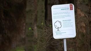 VIDEO. Leuven plant 2 buurtbossen in Kessel-Lo en Heverlee, samen goed voor meer dan tweeduizend bomen