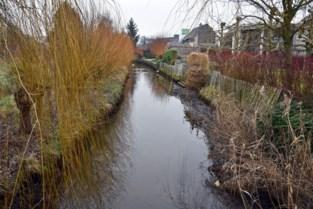 Bewoners helpen bij waterproblemen Dommel
