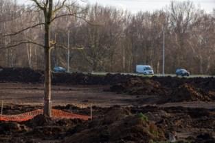 Stad kapt 3,2 hectare bos en compenseert met minder bomen